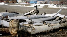 For the sake of the Inupiat, Shell should give up drilling in the Arctic