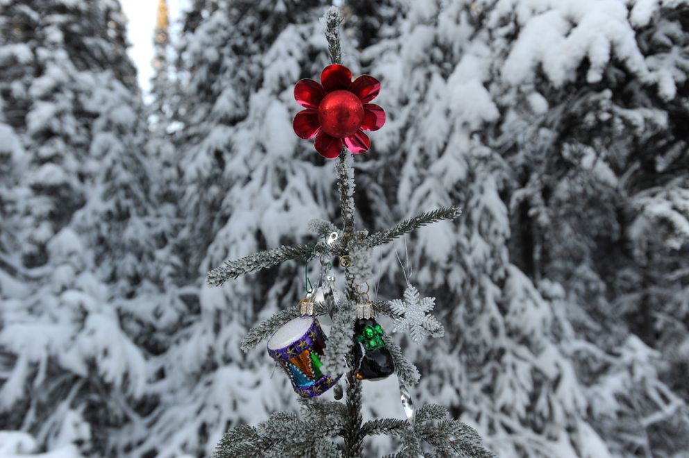 Decorations grace a tree on Randy's Loop. (Anne Raup / ADN)