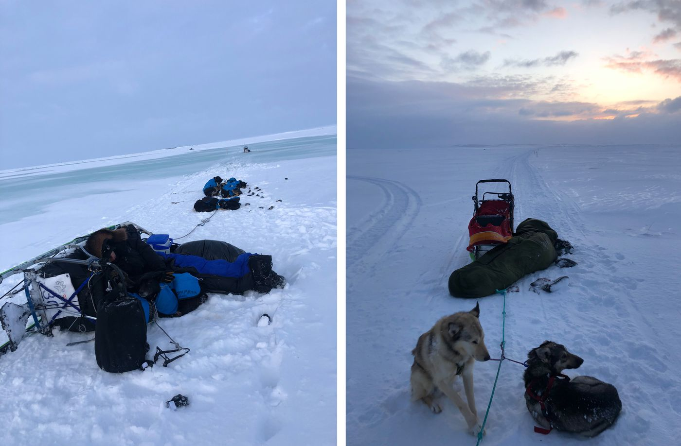 Two photos by Kailyn Fittsporter show the area near Solomon River where rescuers located Tom Knolmayer, Matt Failor and Sean Underwood during Iditarod 2020 on March 20, 2020. Overflow is visible beyond Knolmayer in photo at left. Underwood sleeps by his sled at right. (Kailyn Fittsporter photos)