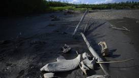 In fast-thawing Siberia, radical climate change is warping the earth beneath the feet of millions
