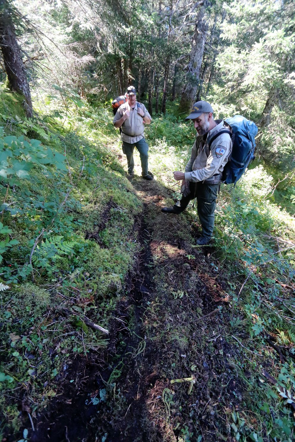 Park officials inspect the newly built Tutka Backdoor trail.(Ground Truth Trekking)