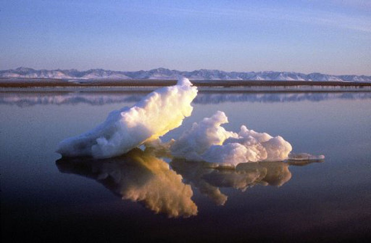 Sea ice floats in the Beaufort Sea off the coast of the Arctic National Wildlife Refuge. (U.S. Fish and Wildlife Service photo)