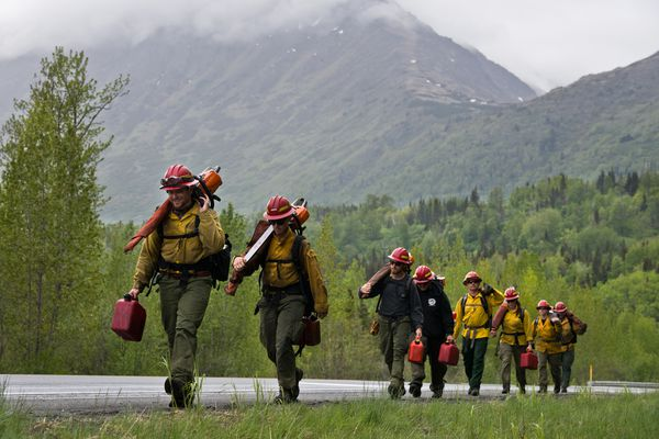 A Chugach National Forest firefighting crew from Moose Pass walks along the Sterling Highway at the conclusion of a workday on June 7, 2017. The 8-person team worked on an ongoing project to thin a 33-acre stand of trees along a powerline corridor near the highway a few miles east of Cooper Landing. Marc Lester / Alaska Dispatch News)