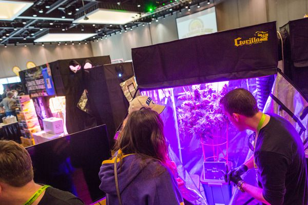Pictured: Ryan Smith, right, owner of AK Hydro Gardens, shows off his company's grow tent at the Northwest Cannabis Classic trade show, held at Anchorage's Dena'ina Civic and Convention Center on May 16, 2015.