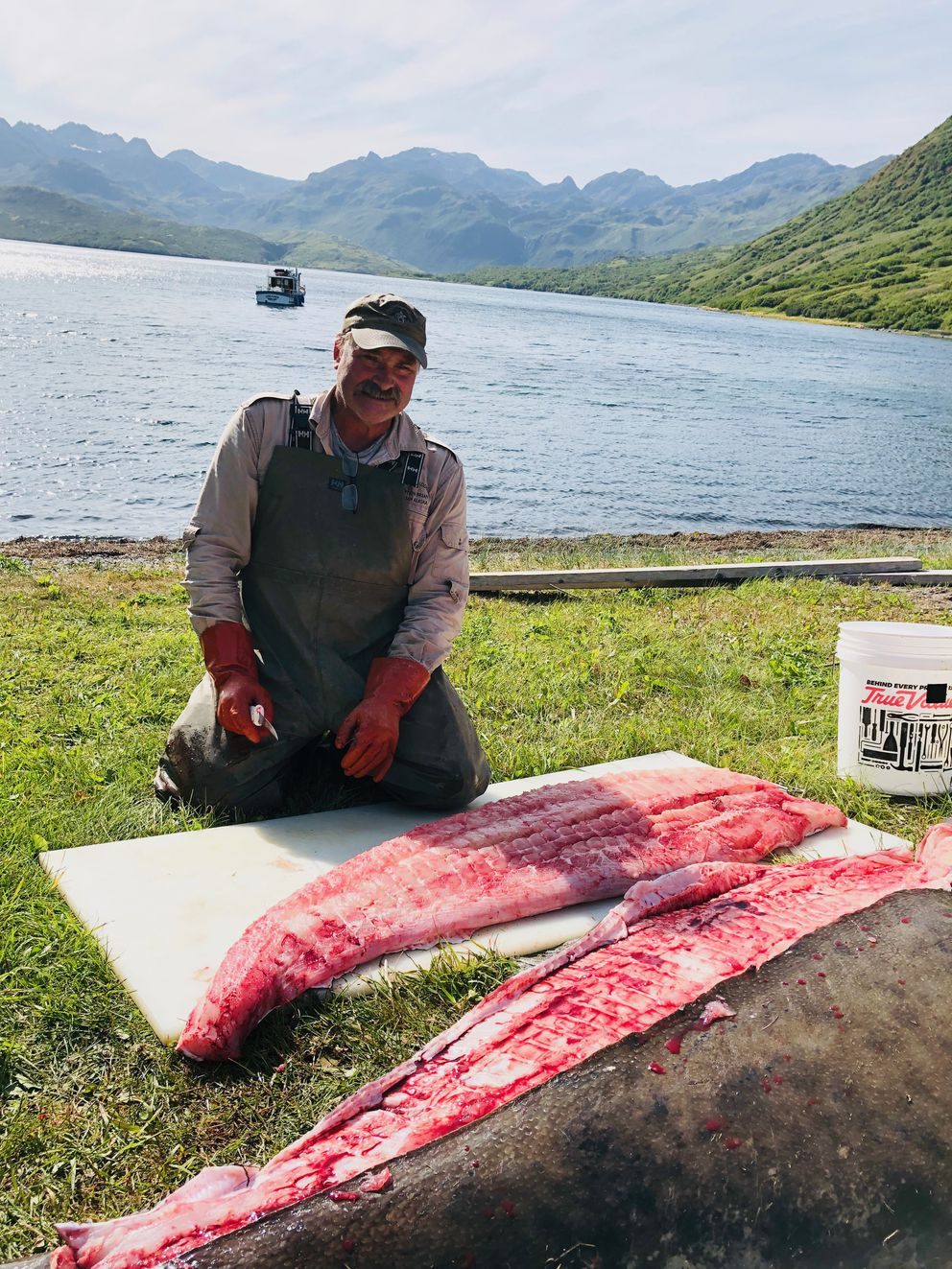 Brian Peterson, master guide for Ugak Bay Lodge on Kodiak Island, filets the 96-inch halibut hooked by Damon Nelson on Saturday, August 17, 2019, in Ugak Bay. (Photo by Brian Barnes)