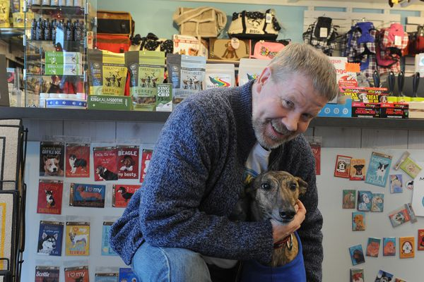 AK Bark, owner Mark Robokoff, poses with his dog Chyna, in his Dimond Blvd. store in Anchorage, Alaska on Wednesday, Feb. 14, 2018. Robokoff stocks cannabis products with his biggest seller being ACE CBD hemp oil. (Bob Hallinen / ADN)