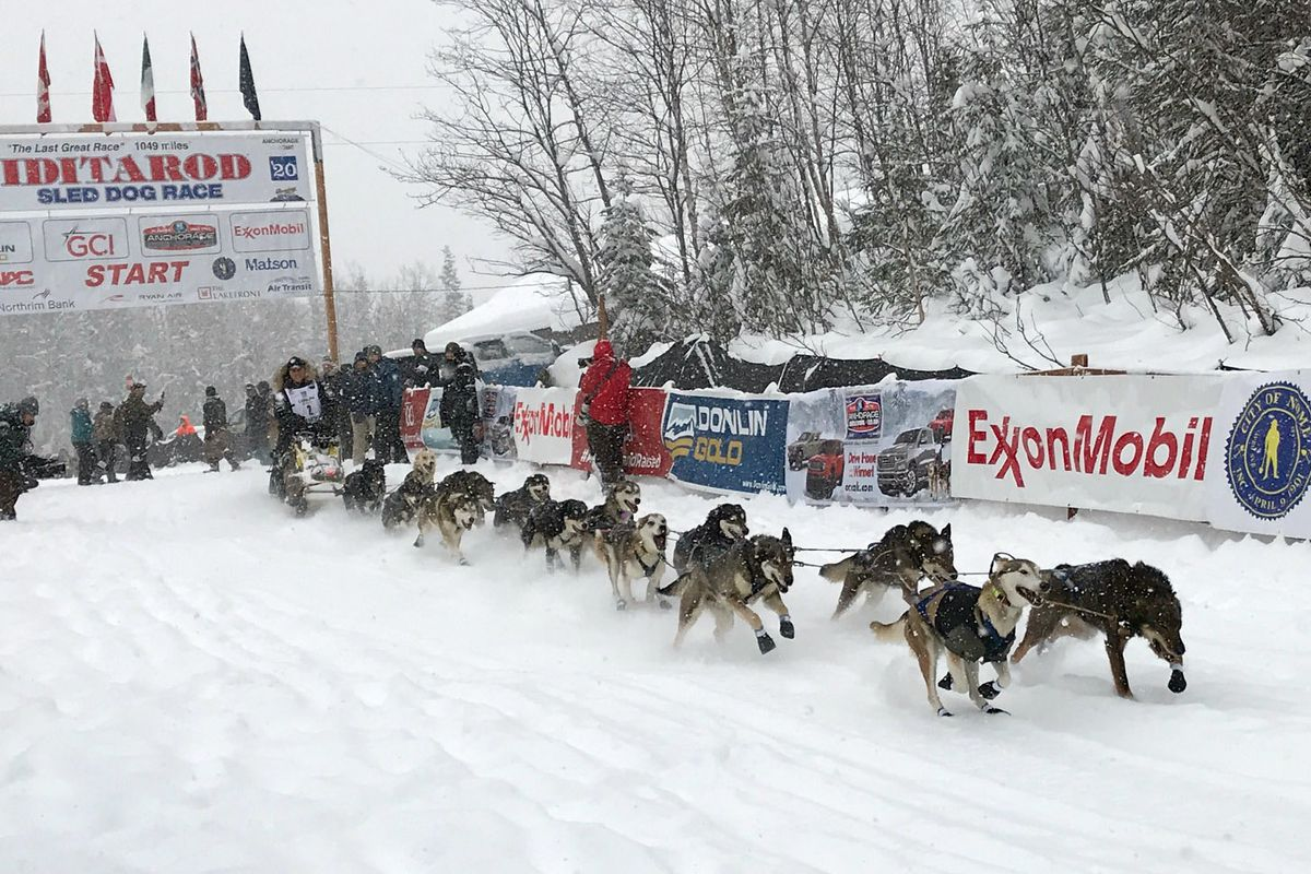 Iditarod rookie Martin Massicotte was the first musher out of Willow during the 2020 restart. The 2021 restart will be held at Deshka Landing. (Bill Roth / ADN archive)