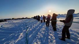 Kivalina whalers bring home beluga bounty, while Utqiagvik is having a strong season