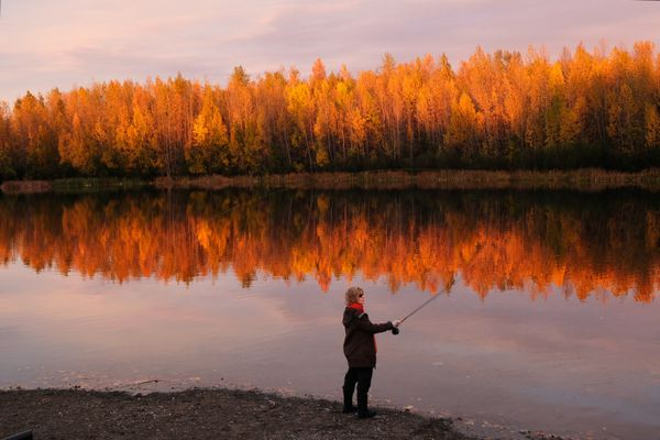 Susan Maley practices casting her fly fishing line on Cheney Lake as the evening sun hits the golden leaves in the vicinity on September 26, 2017.(Marc Lester / Alaska Dispatch News)