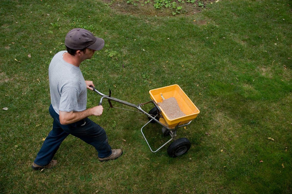 A man spreads fertilizer on a lawn. (Getty)