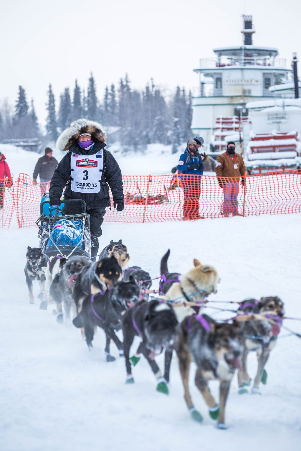 Iditarod musher Jessie Royer mushes past the Riverboat Discovery on the Chena River in Fairbanks in 2015.  (Loren Holmes / ADN)
