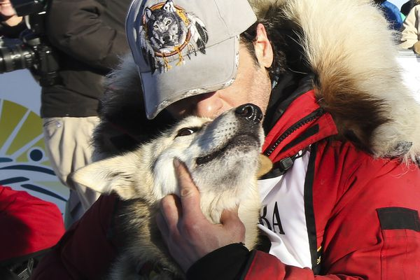 Hugh Neff of Tok captured his second Yukon Quest title on Monday.