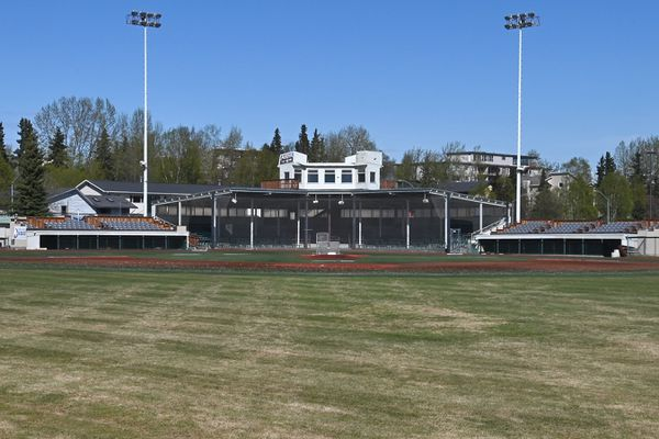 The grass is beginning to turn green in the outfield at Mulcahy Stadium on Wednesday, May 13, 2020, during the COVID-19 pandemic. (Bill Roth / ADN)