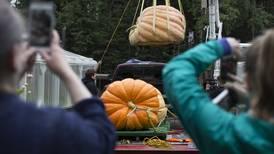 Video: Pumpkin weigh-off at the Alaska State Fair