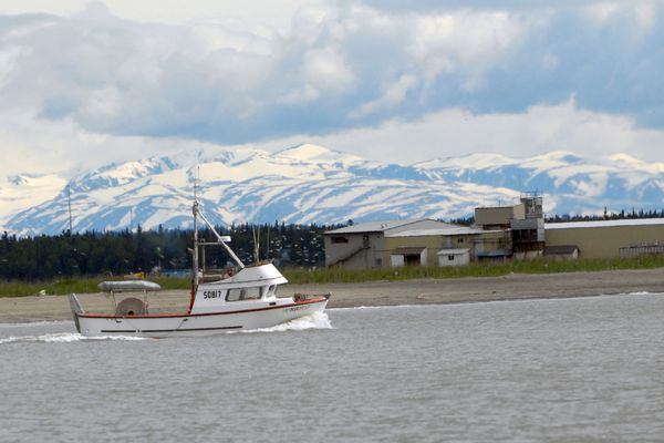 A commercial salmon fishing boat heads out of the Kenai River toward Cook Inlet on Sunday, June 16, 2019. (Matt Tunseth / ADN)