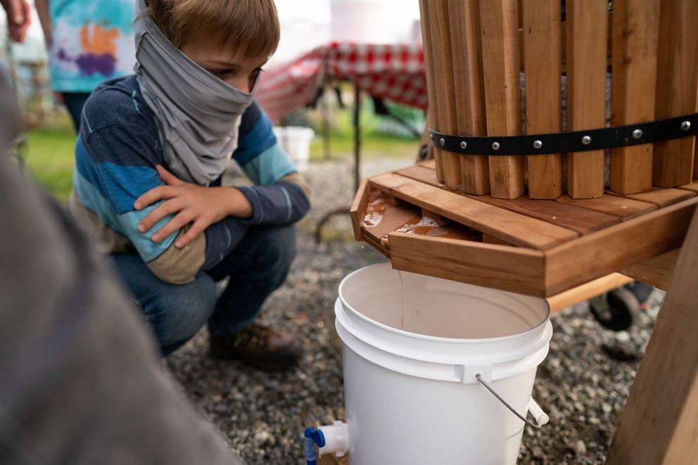 Ian Leider, 6, watches apple juice drip from an apple press at the Government Hill Commons orchard on Wednesday, Sept. 16, 2020. (Loren Holmes / ADN)