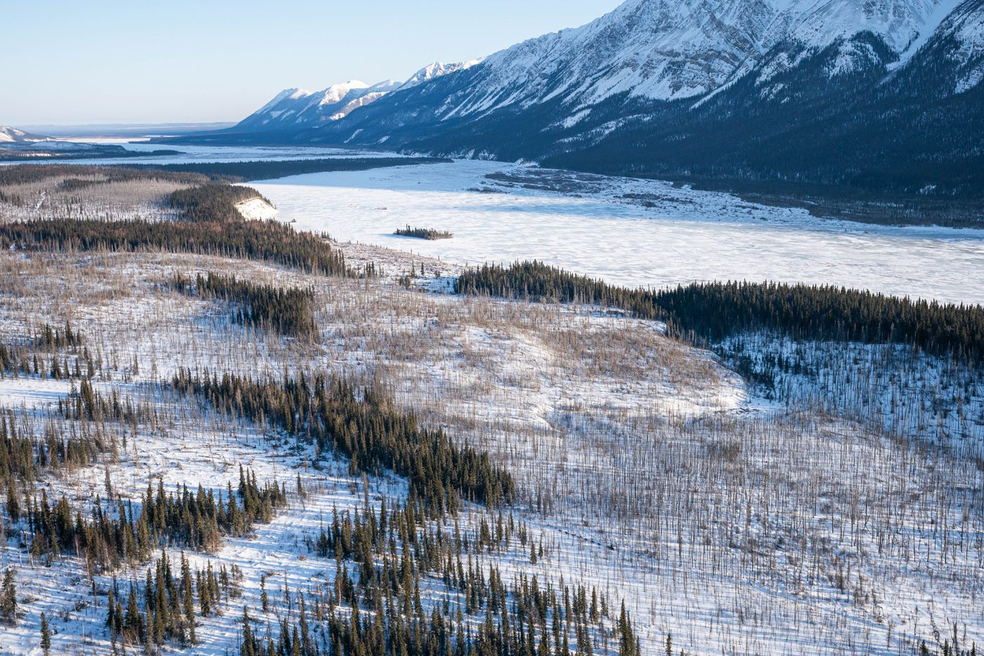 A musher makes their way along the south fork of the Kuskokwim River after leaving Rohn on Tuesday. (Loren Holmes / ADN)