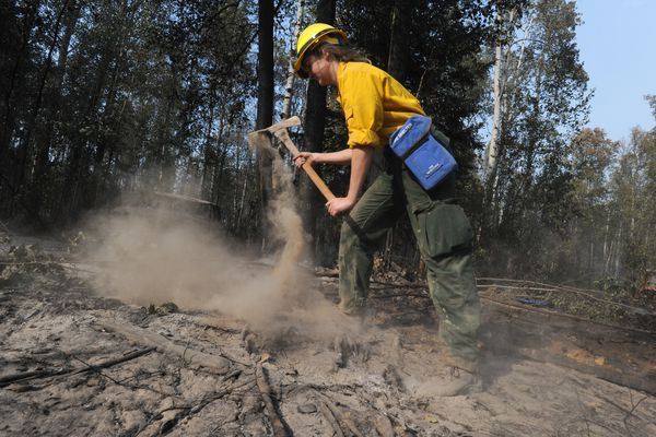 Firefighter / medic Molly Swanson with Chugiak Volunteer Fire and Rescue mops up hot spots during the McKinley Fire along the Parks Highway on Tuesday, Aug. 20, 2019. (Bill Roth / ADN)