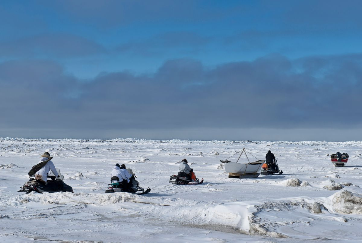 A whaling crew heads out of Utqiagvik onto the sea ice toward open water to begin their bowhead whale hunt on April 17, 2016. (Marc Lester / ADN)