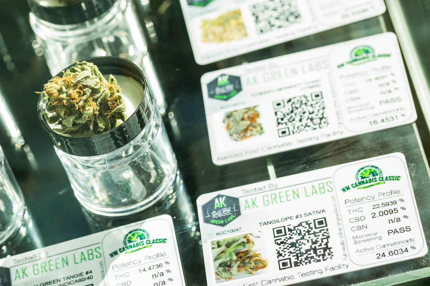 Marijuana buds are displayed under glass after being judged during the inaugural Cannabis Classic competition at the Northwest Cannabis Classic trade show, held at Anchorage's Dena'ina Civic and Convention Center on Saturday, May 16, 2015. A chemical analysis of each strain on a card next to the sample characterizes its potency.