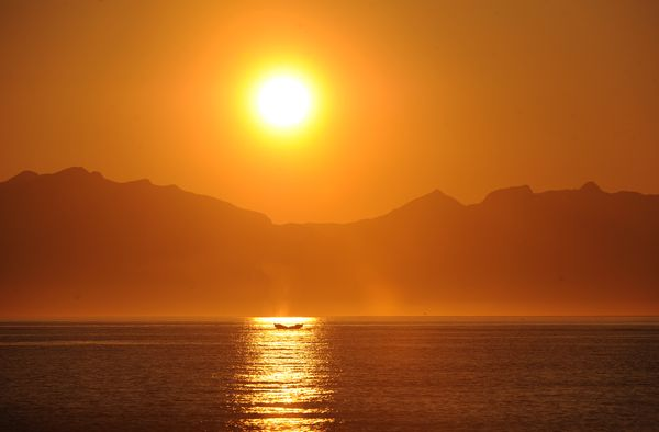 In evening sunlight,a humpback sounds in Frederick Sound. (Bob Hallinen / ADN)