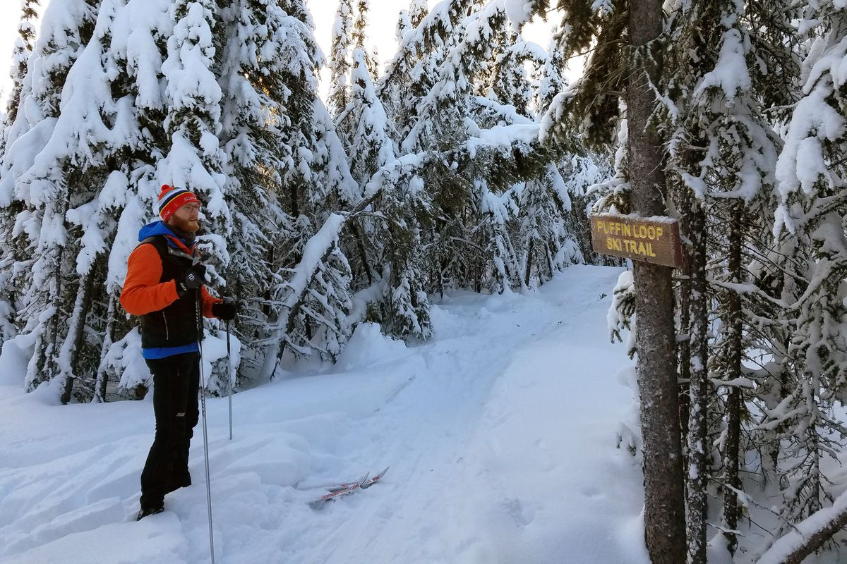 Bryant Wright, trails coordinator for the Fairbanks North Star Borough Parks and Recreation Department, pauses along Puffin Loop of the Pearl Creek ski trail system. (Erin Kirkland)