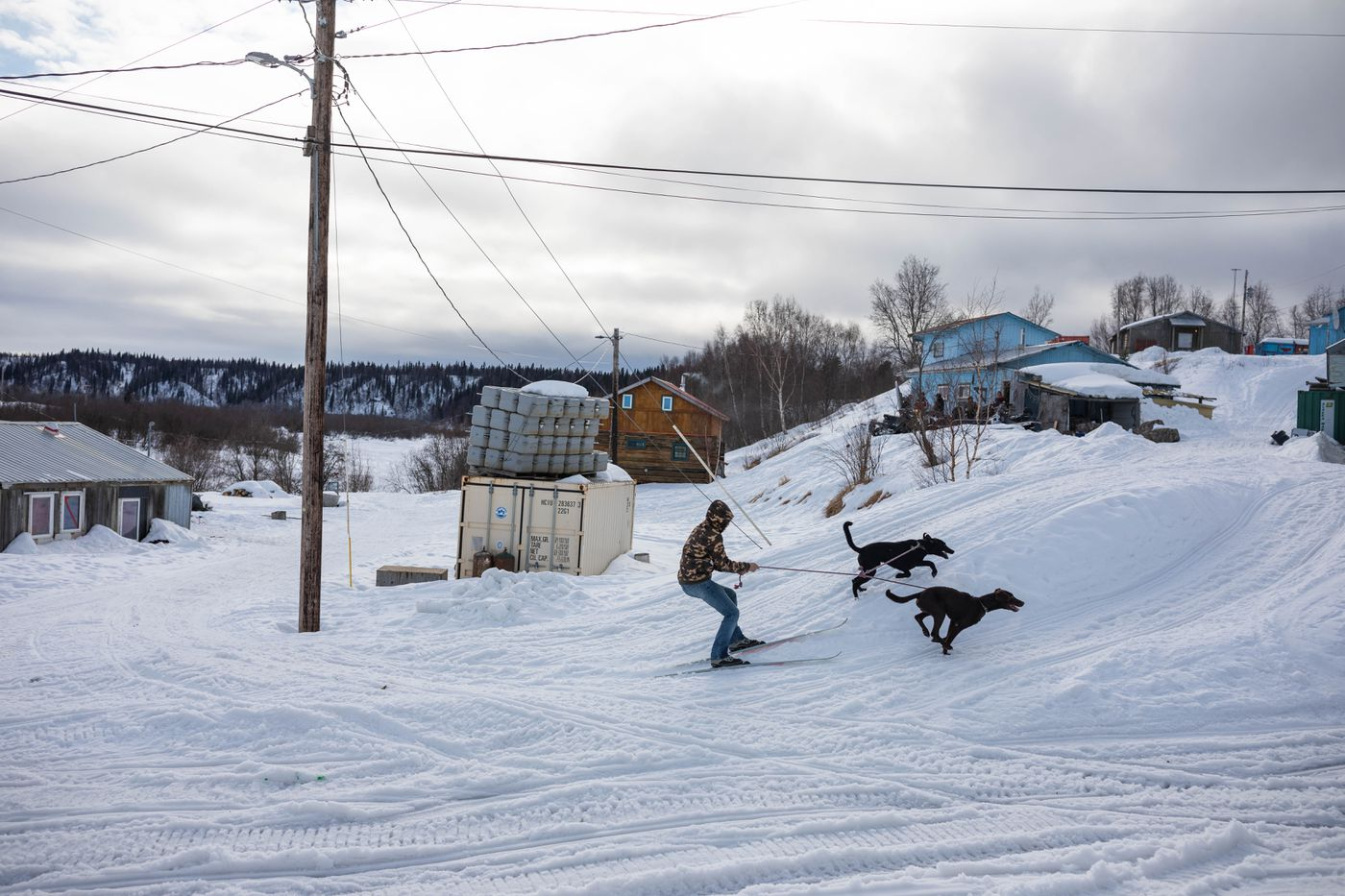 Keith Pitka skijors with his dogs on March 8, 2019 in Russian Mission. (Loren Holmes / ADN)