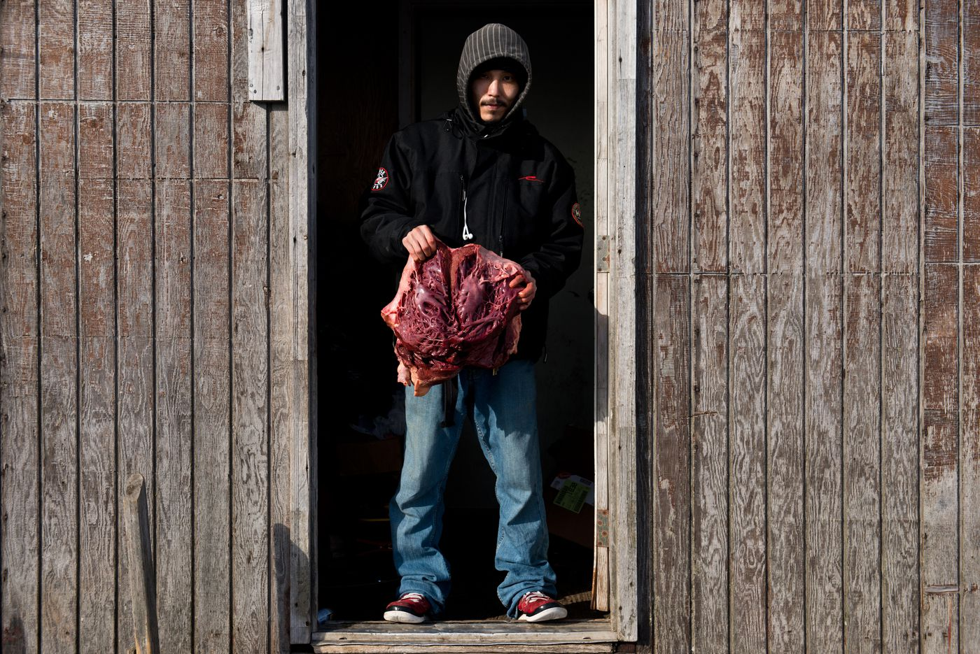 Felix Wongittilin holds a walrus heart in the entry to his Savoonga home last month. Walrus meat, blubber and heart are all foods that many in the village rely on. (Marc Lester / Alaska Dispatch News)