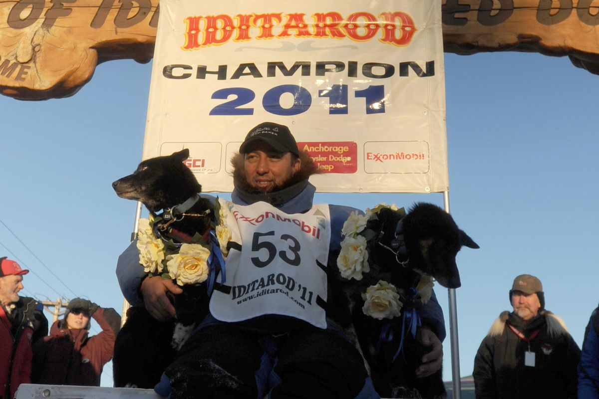 John Baker and his lead dogs Velvet and Snickers in Nome after he won the 2011 Iditarod Trail Sled Dog Race Tuesday morning, March 15, 2011. (Bob Hallinen / ADN)