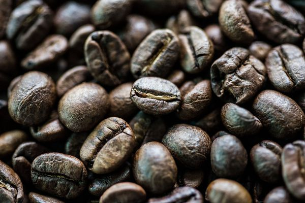 Coffee beans in a bowl at Ban Ta Klang Elephant Village, Thailand. MUST CREDIT: Bloomberg photo by Taylor Weidman.