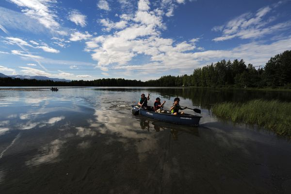 Kids enrolled in the YMCA of Alaska Summer Day Camp program paddle a canoe towards shore at Goose Lake on a sunny Wednesday, June 20, 2018. (Bill Roth / ADN).