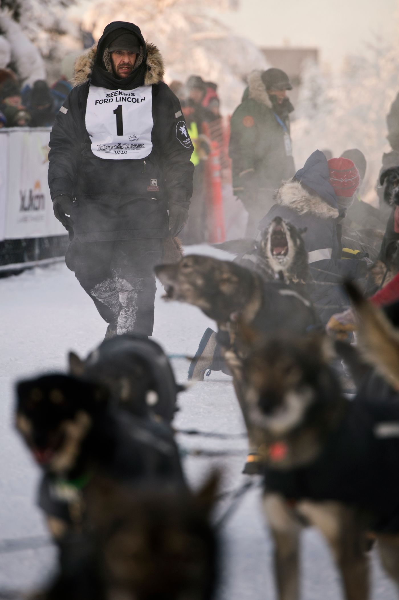 Two Rivers musher Richie Beattie looks at his team before leaving the start line on February 1, 2020. (Marc Lester / Anchorage Daily News)