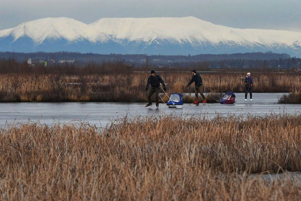 Daniel Johnson and Mark Rowe pull their children in pulks while ice skating at Potter Marsh on Tuesday, Nov. 27, 2018. Suzanne Johnson follows at right. (Bill Roth / ADN)