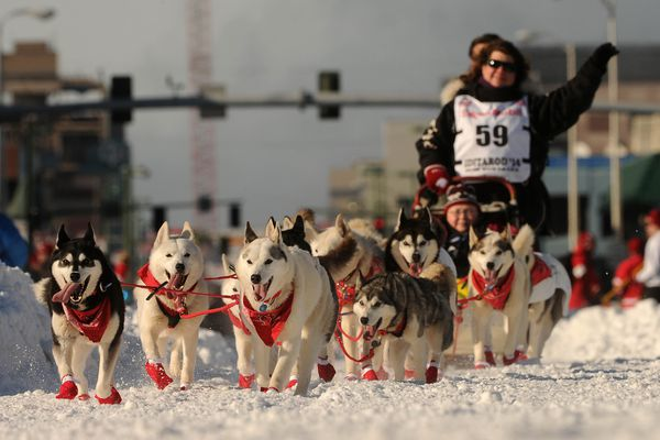 Newsletter: Iditarod; Karen Ramstead, of Perryvale, Alberta, Canada, waves to the crowd during the ceremonial start of the 2014 Iditarod Sled Dog Race on Fourth Avenue in downtown Anchorage on Saturday, March 1, 2014. (Bob Hallinen / ADN Archive 2014)