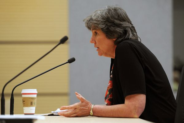 Office of Management and Budget director Pat Pitney fields questions at a legislative hearing held May 6, 2015, at the Anchorage Legislative Information Office downtown. Pitney is now the interim president of the University of Alaska. (Erik Hill / ADN archive)