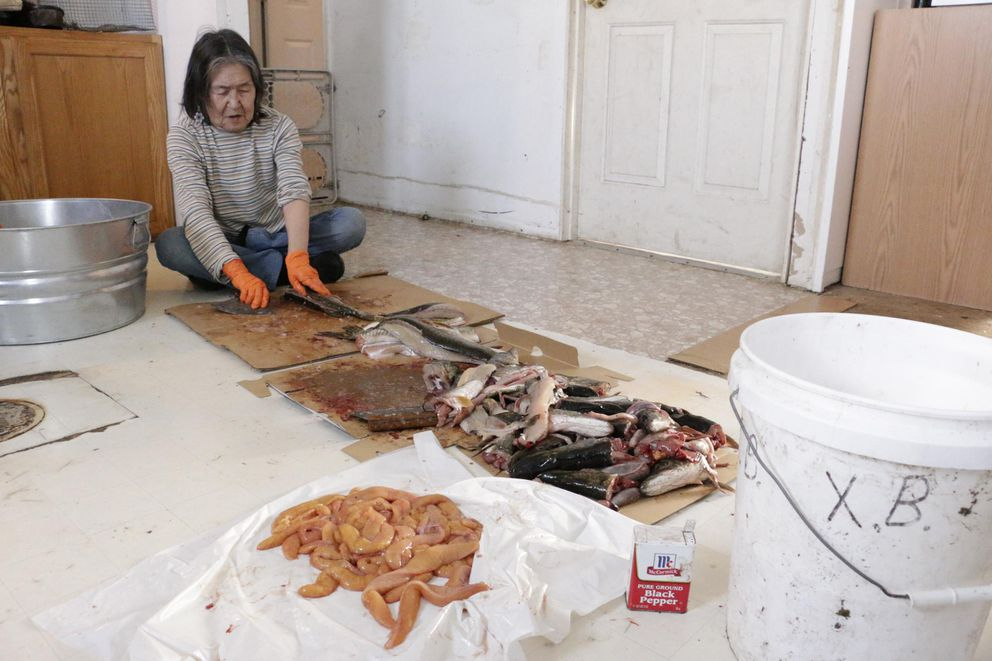 Xenia Black cuts fresh caught pike in her Eek home, rinsing the slabs with water from her kitchen sink on February 21, 2019. (Anna Rose MacArthur / KYUK)