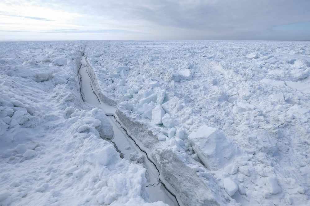 be52d54cd2 For the biggest Arctic expedition ever, scientists will trap themselves in  sea ice