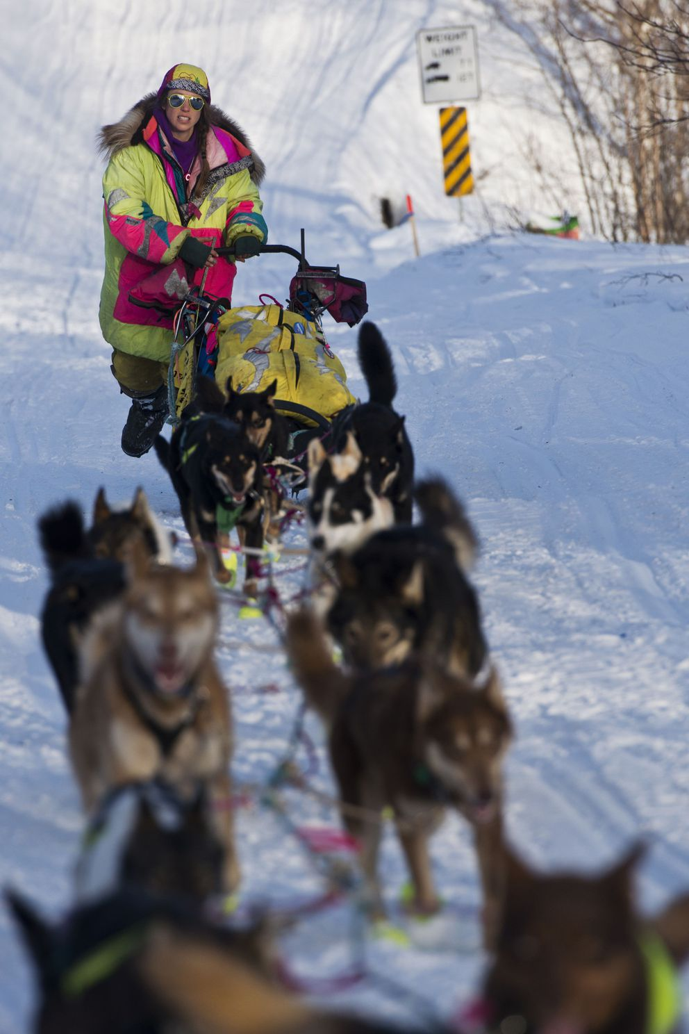 Monica Zappa leaves Takotna on Wednesday, March 9, 2016, during the Iditarod Trail Sled Dog Race. (Marc Lester / ADN archive 2016)