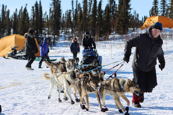 Paige Drobny arrives at Ophir to rest her dogs on the in-bound trail during the Iditarod Sled Dog Race on Friday March 12th, 2021. (Zachariah Hughes/for ADN)