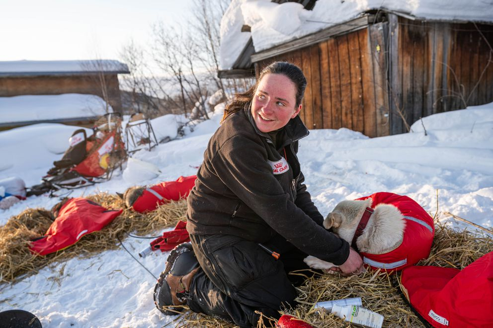 Laura Neese massages her dogs after arriving in Takotna on Wednesday, March 11, 2020 during the Iditarod Trail Sled Dog Race. (Loren Holmes / ADN)