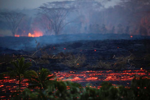 Lava flows near trees on the outskirts of Pahoa during ongoing eruptions of the Kilauea Volcano in Hawaii, U.S., May 19, 2018. REUTERS/Terray Sylvester