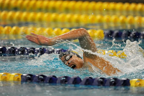 Ethan Kwon, of Service High School, competes in 200-yard freestyle at the CIC Conference swimming and diving championships at Bartlett High Scholl in Anchorage, Alaska, on Saturday, October 29, 2016. (Bob Hallinen / Alaska Dispatch News)Kendall Wagner, of West Anchorage High School, competes in diving at the CIC Conference swimming and diving championships at Bartlett High School in Anchorage, Alaska, on Saturday, October 29, 2016. (Bob Hallinen / Alaska Dispatch News)