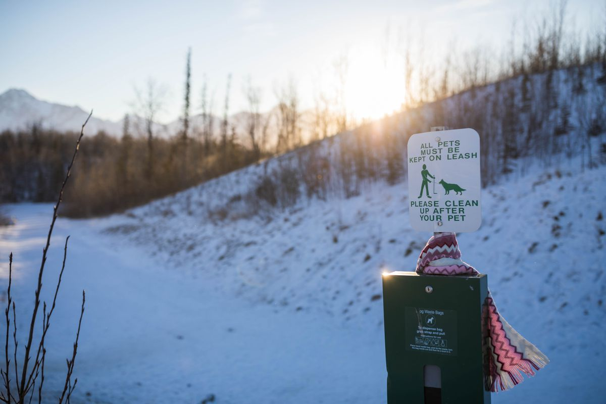 A sign at the start of the Crevasse-Moraine Trail in Palmer reminds pet owners to leash their pets while using the trails on Jan. 6. (Loren Holmes / ADN file)