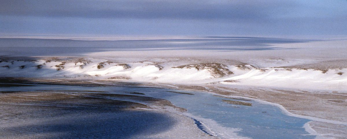 The coastal plain of the Arctic National Wildlife Refuge in 2001 (Erik Hill / ADN)