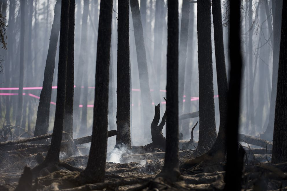 Firefighters worked to contain a wildland fire in near Campbell Creek and Elmore Road in Midtown Anchorage on July 3, 2019. (Marc Lester / ADN)