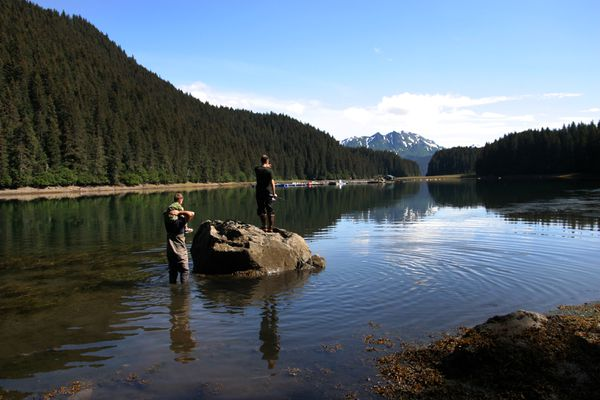 People look for fish in Tutka Lagoon, near the current hatchery pens. (Ground Truth Trekking)