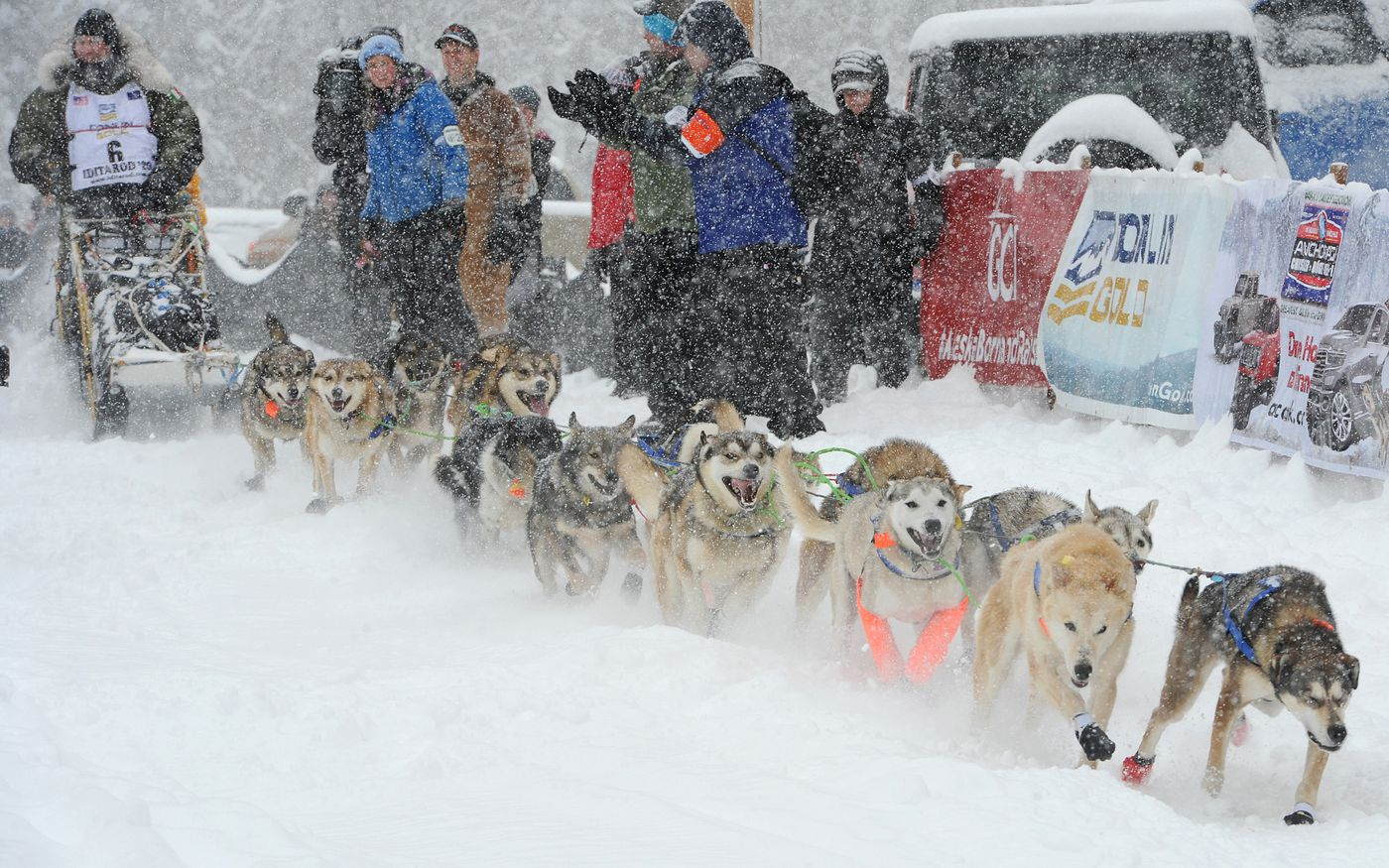 Iditarod rookie Fabio Berlusconi of Italy drives his dog team during the restart of the Iditarod Trail Sled Dog Race in Willow on Sunday, March 8, 2020. (Bill Roth / ADN)
