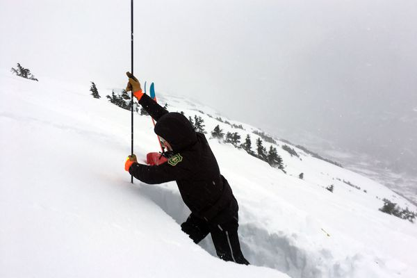 Wendy Wagner, a professional avalanche forecaster and the director of the Chugach National Forest Avalanche Information Center, plants a probe to measure snow depth on a mountainside in Turnagain Pass on Saturday, Dec. 24, 2016. (Nathaniel Herz / Alaska Dispatch News)