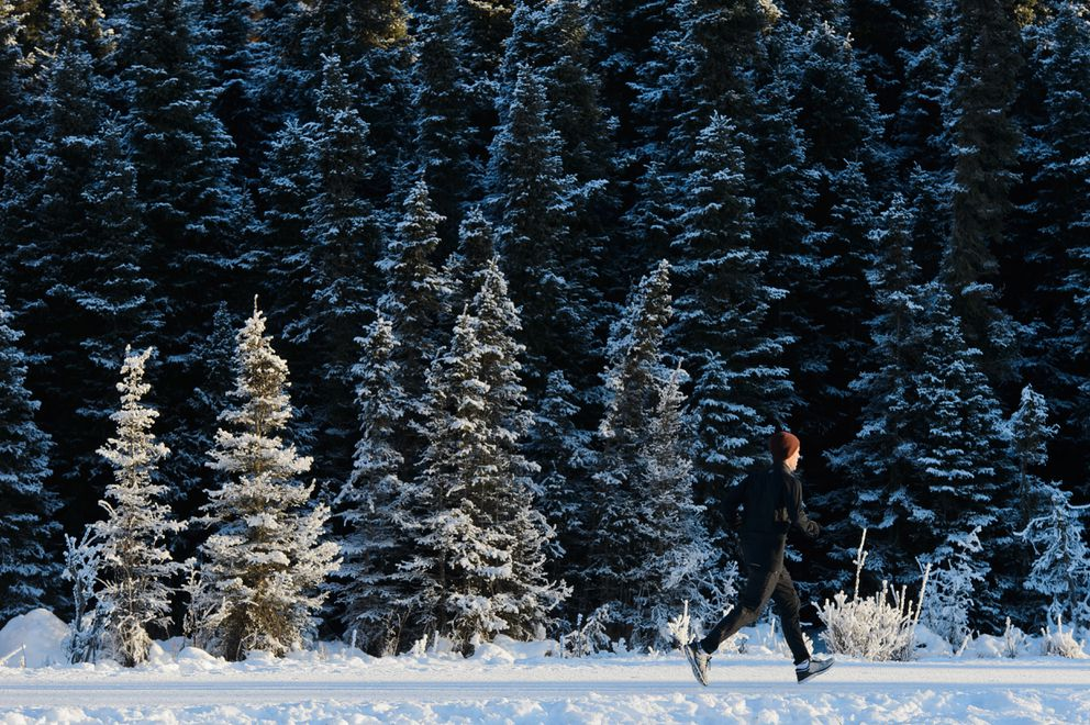 A runner passes trees near Davenport Fields on the Chester Creek Trail on January 17, 2019. (Marc Lester / ADN)