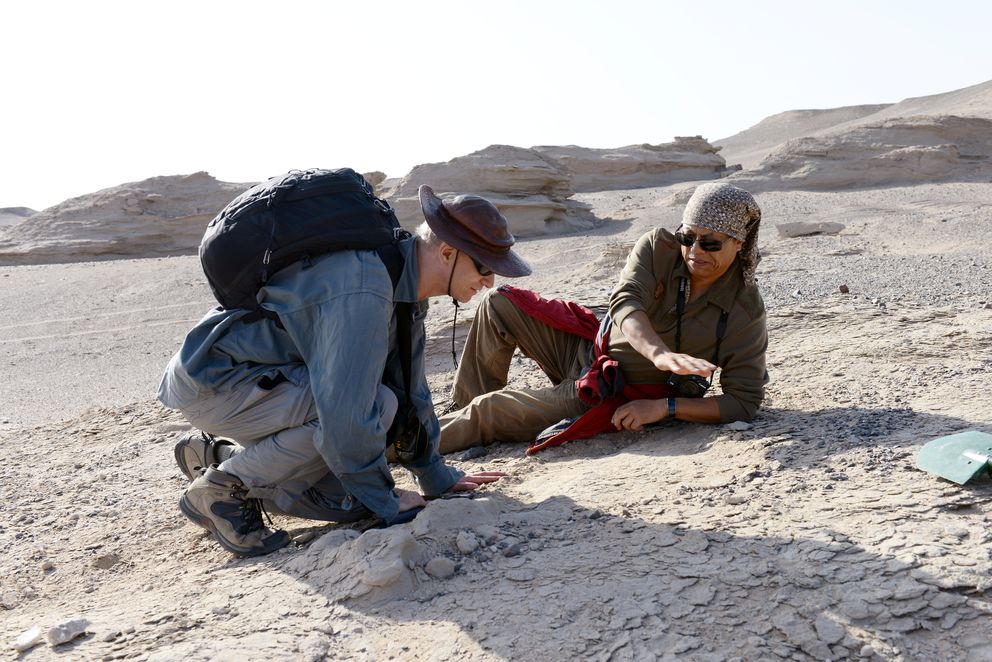 Paleontologists Xiaolin Wang and Alexander Kellner in the field, collecting new specimens in this November 1, 2016 photo in Xinjiang Uygur Autonomous Region in northwestern China, provided November 30, 2017. (Courtesy Alexander Kellner/Museu Naciaonal/UFRJ/Handout via Reuters)